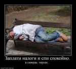 389779_zaplati-nalogi-i-spi-spokojno.jpg